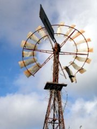 Windmill at Mt Tamborine In Springtime.