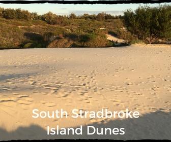 South Stradbroke Island sand dunes
