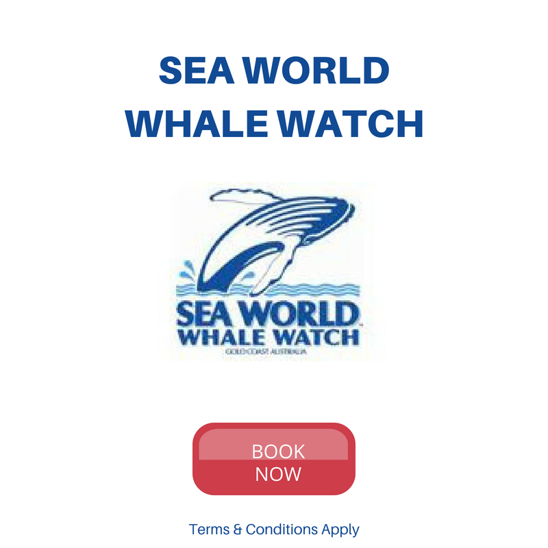 Sea World Whale Watch Latest Deals