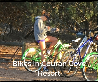 Hire bikes at Couran Cove. Great times for all.