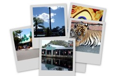 There are many places to buy Dreamworld Tickets.