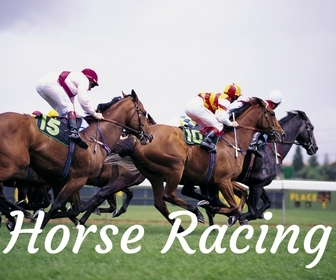 Horse Racing on Gold Coast