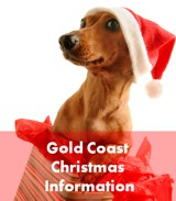 Click to discover Christmas on the Gold Coast!