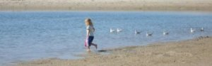 Labrador lagoon is a family friendly beach on the Gold Coast