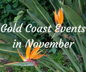 Gold Coast events in November