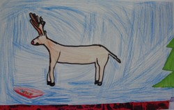 Reindeer by Charlie Aged 8 years. Who says you can't find reindeer in Australia?