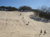 Sand Tobogganing at South Stradbroke Island
