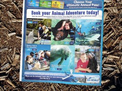 Sea World Adventures, so much to do and see.