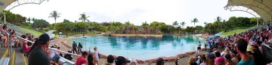Sea World Dolphin Show Arena