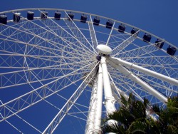 Sea World Eye 2007