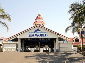 Sea World Queensland Australia is located on the Gold Coast.