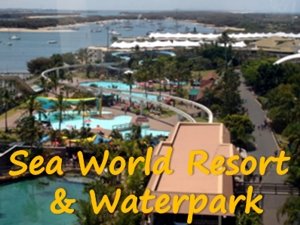 Sea World Resort & Waterpark from above