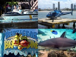 Some of the attractions at Sea World Gold Coast