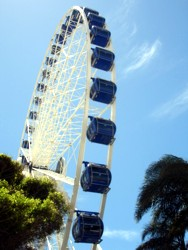 SeaWorld Eye 2007