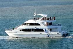 Seaworld Whale Watch Cruise Boat on Broadwater.