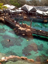 Shark Bay From Sea World Eye