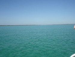 The blue waters of Tangalooma!