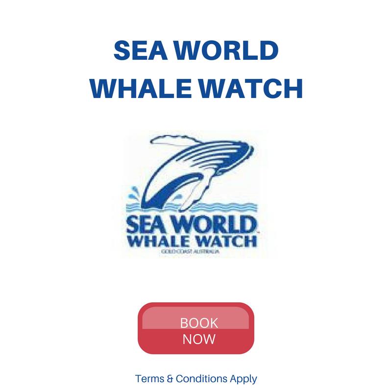 Sea World Whale Watch Latest Deals