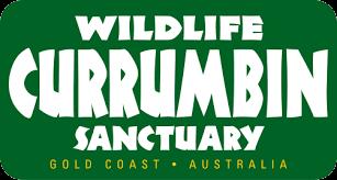 CWS Logo.