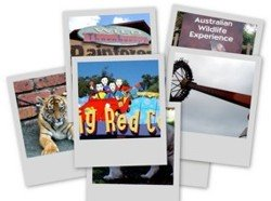 There are many Dreamworld attractions to keep everyone happy.