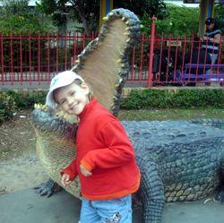 Crocodile in Dreamworld!