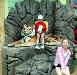 Tiger photo opportunity