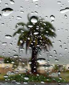 Its raining in Surfers Paradise, what can I do?