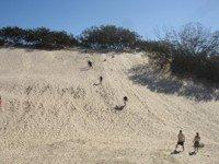 Sand Tobogganing at South Stradbroke Island