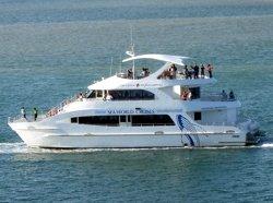 Seaworld Gold Coast Cruise Boat