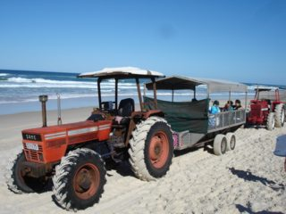 South Stradbroke Island Resort Tractor trip across the island to the surf beach and sand tobogganing